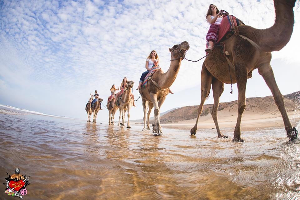 Happy We Love Spain international students enjoying a camel ride on the beaches of Tangier on the Morocco Fantasy Weekend Trip