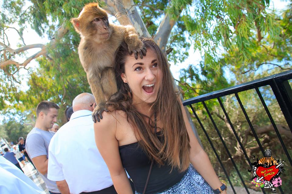 Monkey posing on the shoulders and head of a study abroad student in Gibraltar on the Morocco Weekend Trip with We Love Spain