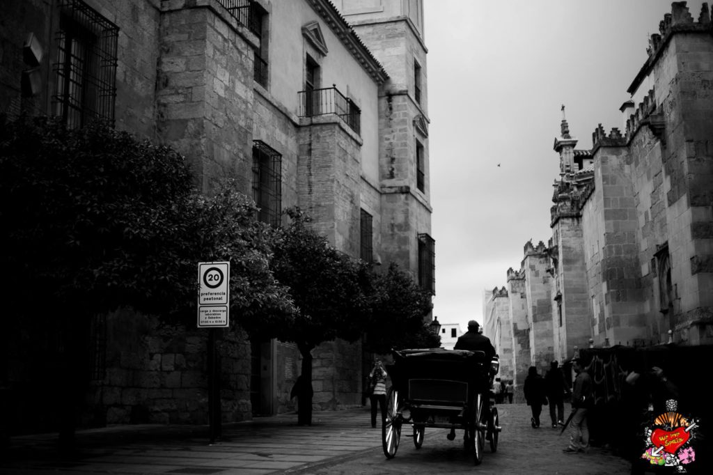 Horse and Carriage on the Cordoba and Medieval Castle Day Trip