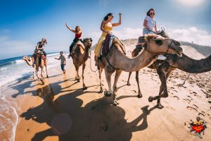 Study abroad students riding camels on the beach on one of We Love Spain´s Trips and Excursions for International Students
